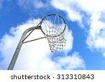 netball goal ring and net...   Shutterstock . vector #313310843