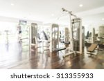 abstract blur gym background | Shutterstock . vector #313355933