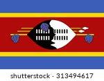 flag of swaziland | Shutterstock .eps vector #313494617
