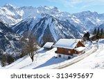 braunwald  switzerland | Shutterstock . vector #313495697