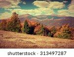 colorful autumn landscape in... | Shutterstock . vector #313497287