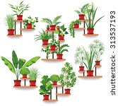 the set of various of potted... | Shutterstock .eps vector #313537193