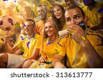 fun fans in stadium arena | Shutterstock . vector #313613777
