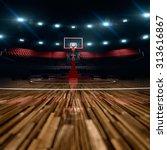 basketball court. sport arena.  ... | Shutterstock . vector #313616867