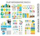 flat infographic element pack 4 | Shutterstock .eps vector #313630523