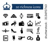richness icons | Shutterstock .eps vector #313693763