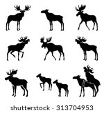 Set Of Moose Silhouettes....