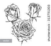 black and white engrave vector... | Shutterstock .eps vector #313751303