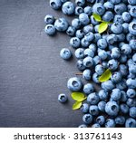 Blueberry Border Design. Ripe...
