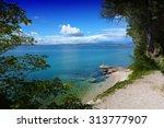 beautiful landscape in... | Shutterstock . vector #313777907