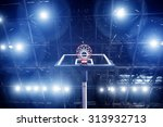 basketball concept with... | Shutterstock . vector #313932713