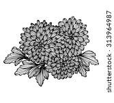 elegant bouquet with... | Shutterstock . vector #313964987