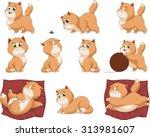 funny kittens | Shutterstock .eps vector #313981607