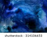 hand painted watercolor... | Shutterstock . vector #314106653