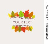 colorful autumn leaves logo.... | Shutterstock .eps vector #314132747