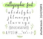 calligraphic vector font with... | Shutterstock .eps vector #314193893