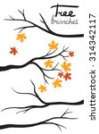 vector collection of autumn... | Shutterstock .eps vector #314342117