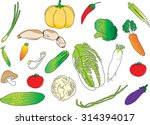 vegetable | Shutterstock .eps vector #314394017