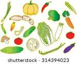 vegetable   Shutterstock .eps vector #314394023
