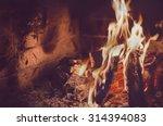 fireplace fire | Shutterstock . vector #314394083