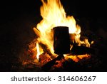 the flames of the fire | Shutterstock . vector #314606267