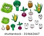 fresh grocery vegetables set... | Shutterstock . vector #314662667