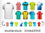 collection of various soccer... | Shutterstock .eps vector #314663543