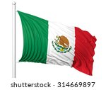 waving flag of mexico on... | Shutterstock . vector #314669897