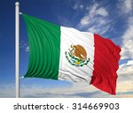 waving flag of mexico on... | Shutterstock . vector #314669903