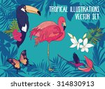 set of vector tropical... | Shutterstock .eps vector #314830913