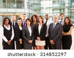 group portrait of serious... | Shutterstock . vector #314852297