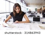 young female architect working... | Shutterstock . vector #314863943