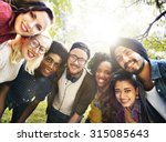 diversity friends friendship... | Shutterstock . vector #315085643