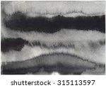 black abstract watercolor macro ...   Shutterstock . vector #315113597