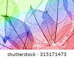 multicolor decorative skeleton... | Shutterstock . vector #315171473