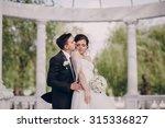 beautiful wedding couple in a... | Shutterstock . vector #315336827