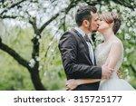 wedding couple. beautiful bride ... | Shutterstock . vector #315725177