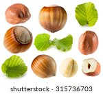 collection of hazelnuts... | Shutterstock . vector #315736703