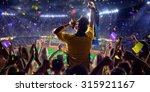 Fans On Stadium Game Panorama...
