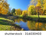 autumn park with colorful trees ... | Shutterstock . vector #316030403