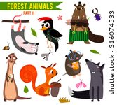 vector set of cute woodland and ... | Shutterstock .eps vector #316074533