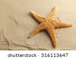 starfish on a beach sand | Shutterstock . vector #316113647