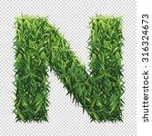 alphabet n of green grass. a... | Shutterstock .eps vector #316324673