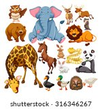 wild animals on white... | Shutterstock .eps vector #316346267