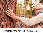Senior Woman Touching Tree In...