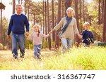 grandparents and grandchildren... | Shutterstock . vector #316367747