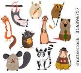 Vector Set Of Small Mammals In...