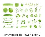 organic  bio  natural design... | Shutterstock . vector #316415543
