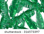 tropical palm leaves seamless... | Shutterstock .eps vector #316573397