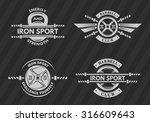 set of sports emblems  logos ... | Shutterstock .eps vector #316609643